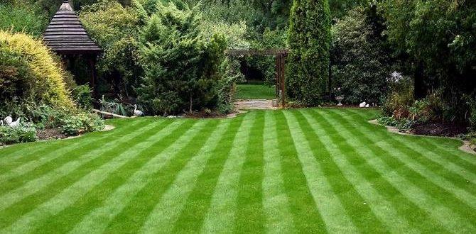 Lawn Stripes in Ireland